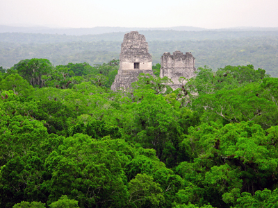 Guatemala: Mayan Temple in the Forest