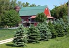 Iowa: Red Barn House and Silo in Pine Trees